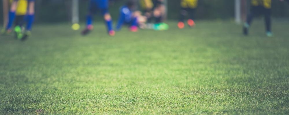 Match Postponed: Hawick Royal Albert vs Vale of Leithen